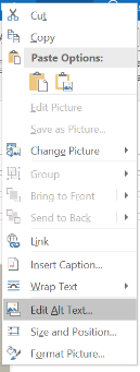 Outlook image editing menu for adding alt text to video image.